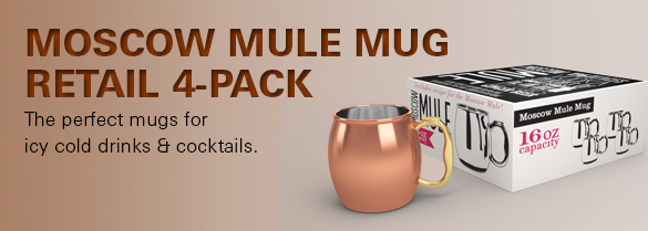 Moscow Mule Mug set affordable